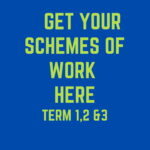 DETAILED C.B.C. SCHEMES OF WORK – TERM 3